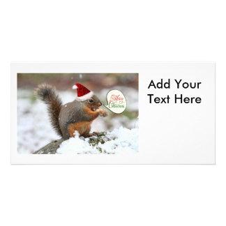 Xmas Squirrel in Snow Card