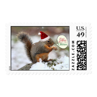 Xmas Squirrel in Snow Postage Stamps