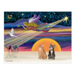 Xmas Star - Brown and Orange Tabby cats (two) Post Card