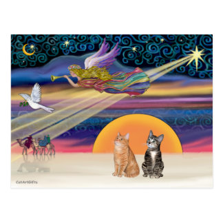 Xmas Star - Brown and Orange Tabby cats (two) Postcard