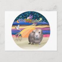 Xmas Star - Guinea Pig 2 Holiday Postcard