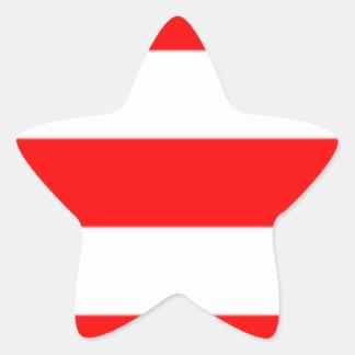 Xmas Star Sticker