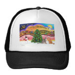 Xmas Sunrise 2 - Two Abyssinian cats Mesh Hat