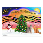 Xmas Sunrise 2 - Two Abyssinian cats Postcards