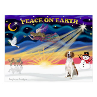 Xmas Sunrise - American Foxhound 1 Postcards