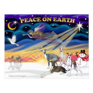 Xmas Sunrise - Four Italian Greyhounds Post Cards