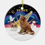 Xmas Sunrise - Nova Scotia dog Christmas Tree Ornament