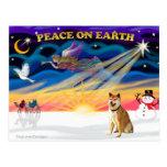 Xmas Sunrise - Shiba Inu 3 Post Cards