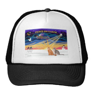 Xmas Sunrise - Two Abyssinian cats Hats