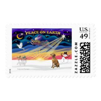 Xmas Sunrise - Vizsla 1 Postage Stamp
