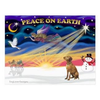 Xmas Sunrise - Vizsla 1 Postcard