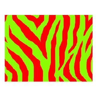 Xmas Zebra Red & Green Postcard
