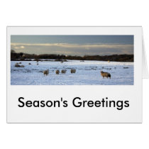 Xmascard2010, Season's Greetings Card