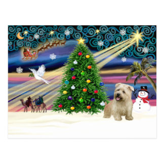 XmasMagic-Glen of Imaal Terrier Postcard