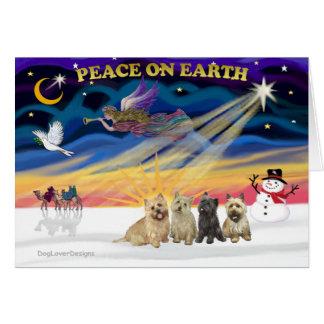 XmasSunrise-4 Cairn Terriers Card