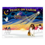 XmasSunrise-Collie 1 Postcards
