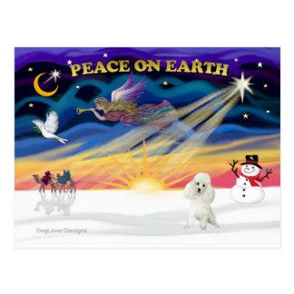XmasSunrise-Poodle (W) Postcard