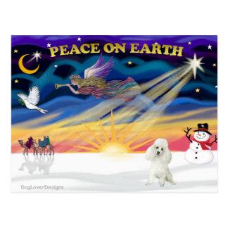 XmasSunrise-White Poodle Postcard