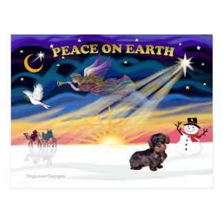 XmasSunrise-WireHaired Dachshund Post Card