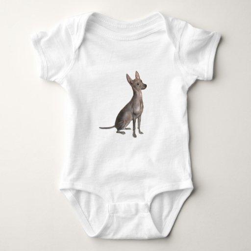 Xoloitcuintle (Xolo) (b) Body Para Bebé