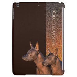 Case Savvy Glossy Finish iPad Air Case with Xoloitzcuintli Phone Cases design
