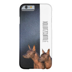 Xoloitzcuintli Phone Cases Case-Mate Barely There iPhone 6 Case