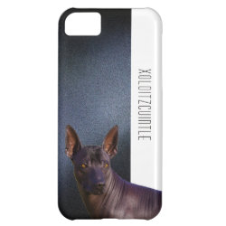 Case-Mate Barely There iPhone 5C Case with Xoloitzcuintli Phone Cases design