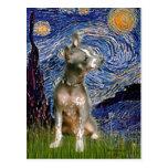 Xoloitzcuintle (Xolo) - Starry Night (Vertical) Postcard