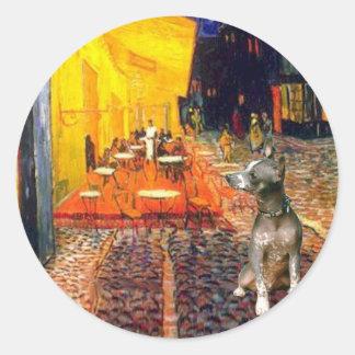 Xoloitzcuintle (Xolo) - Terrace Cafe Classic Round Sticker