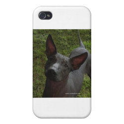 Xoloitzcuintli Phone Cases Case Savvy iPhone 4 Matte Finish Case
