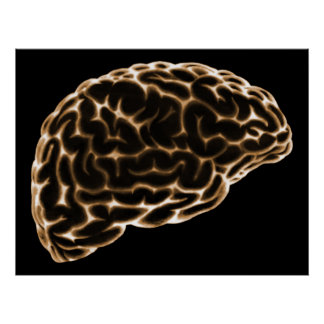 XRAY BRAIN SIDE VIEW ORANGE POSTER