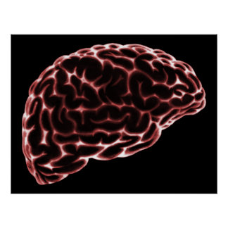 XRAY BRAIN SIDE VIEW RED PRINT