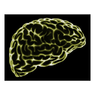 XRAY BRAIN SIDE VIEW YELLOW POSTER