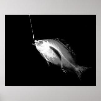XRAY HOOK FISH BLACK WHITE POSTER