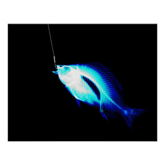 XRAY HOOK FISH NEON BLUE POSTER