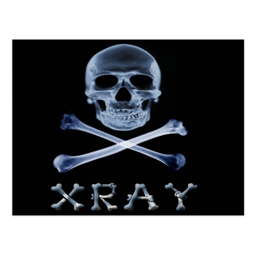 XRAY PIRATE Flag RADIOLOGY JOLLY ROGER Postcard
