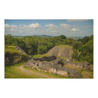 Xunantunich Mayan Ruin in Belize Wood Wall Decor