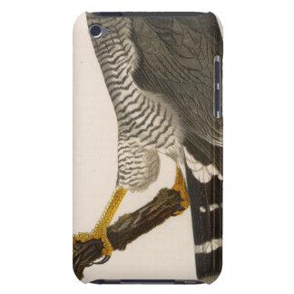 XV Asturina nitida iPod Case-Mate Case