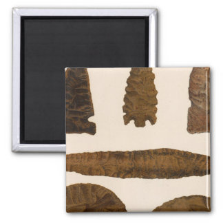XVI Stone implements, New Mexico Magnet