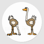 XX avestruces en arena Etiqueta Redonda