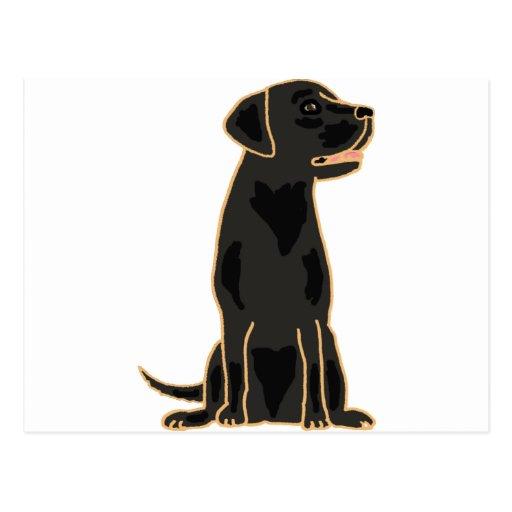 XX- Awesome Black Labrador Retriever Design Post Cards