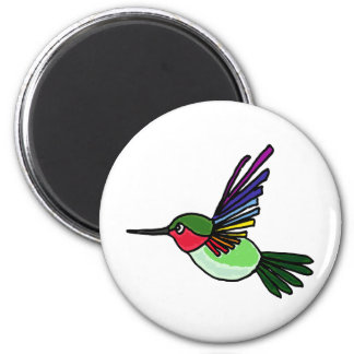 XX- Awesome Rainbow Hummingbird Magnet