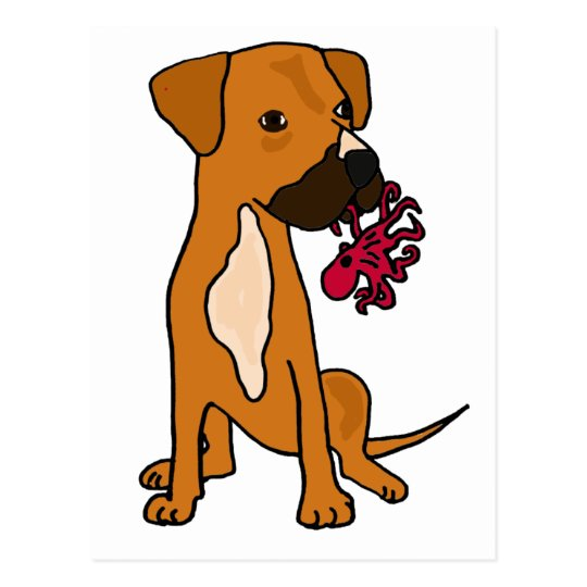 XX- Boxer Mix Rescue Dog Eating Octopus Postcard