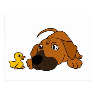 XX- Brown Puppy Dog with Rubber Duck Cartoon Post Cards