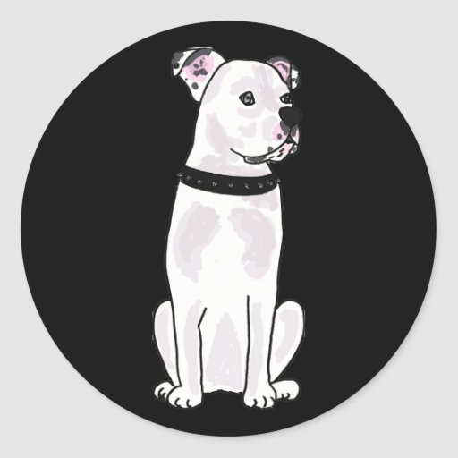 XX- Cute American Bulldog with Studded Collar Round Stickers