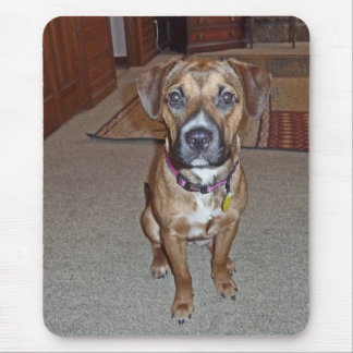 XX- Cute Boxer Mix Puppy Dog Mouse Pad