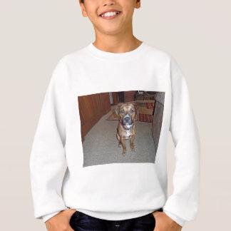 XX- Cute Boxer Mix Puppy Dog Sweatshirt