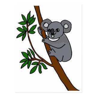 XX- Cute Koala Bear Postcard