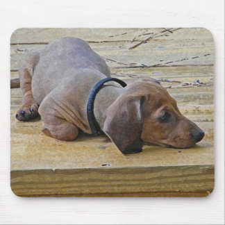 XX- Cute Puppy Dachsund Mouse Pad