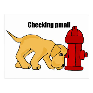 XX- Cute Puppy Dog Checking pmail Fire Hydrant Postcard